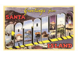 Greetings from Catalina Island  California