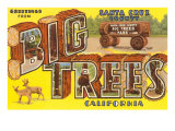 Greetings from Big Trees  Santa Cruz  California