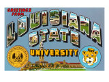 Greetings from Louisiana State University  Louisiana