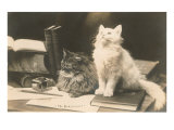 The Bookkeepers  Cats on Desk