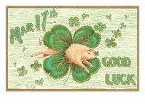 St Patrick's Day  Pig and Shamrock