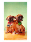 Boxer Puppies with Christmas Bulbs