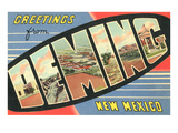 Greetings from Deming  New Mexico