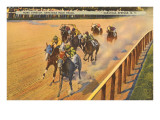 Horse Racing  Saratoga Springs  New York