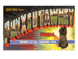 Greetings from Punxsutawney  Pennsylvania