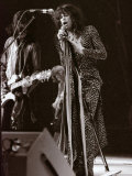 Steve Tyler Lead Singer of the Band Aerosmith in Concert at Pontiac Stadium  Detroit  USA  May 1976