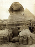 The Great Sphinx Guarding the Pyramids Egypt Statue  c1910