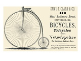 Bicycles  Tricycles  and Velocipedes