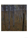 Beech Forest I