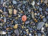 Stones on a Beach Reflect the Light