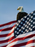 Close View of the American Flag's Stars and Stripes Waving in the Wind
