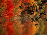Brilliant Fall Colors Reflect on Water