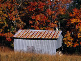 Autumn View of an Old Tin Barn at the Edge of the Woods