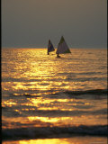 Sailboats Travel Across the Golden Surface of Lake Ontario at Sunset