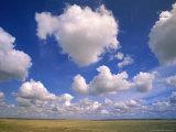 Cumulus Clouds Boiling Over a Saskatchewan Prairie in Summer