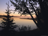 Trees Stand Silhouetted Against Waskesiu Lake at Sunset