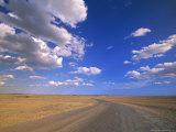 Cumulus Clouds Above a Dirt Road on a Wyoming Prairie