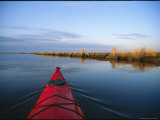 Kayak Glides Across the Mirror-Smooth Surface of Blackwater River