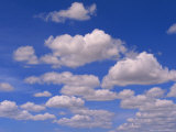 Cumulus Clouds Above the Masai Mara National Reserve
