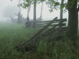 Heavy Fog Hangs Over Split Rail Fences in Early Morning