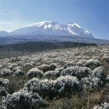 Mount Kilimanjaro  the Breach Wall  as Seen From Shira Plateau