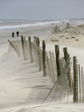 Snow Fence Stretches Across a Dune in an Attempt to Curb Erosion