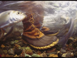 Herring Swims Past a Pair of Boots in a Rushing Stream
