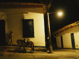 Man Rests Against a Wall Near His Donkey Under a Streetlight
