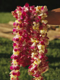 Leis Made of Dendrobium Orchid Blossoms