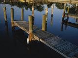 Boat Slips at a Marina on a Calm Morning