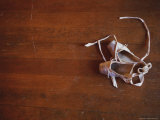 Pair of Ballet Slippers on a Hardwood Floor