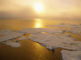 Sunlight over Ice Floes