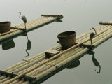 Bamboo Rafts with Heron Artwork and Baskets on a Calm Lake