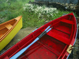 Colorful Rowboats Upon a Shore Near Wild Daisies