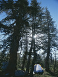 Camping Near John Muir Trail  Yosemite Natinoal Park