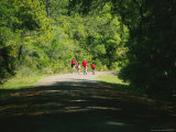 Cyclists on a Trail in the Pinckney Island National Wildlife Refuge