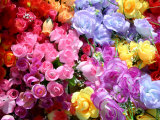Bright and Colorful Array of Silk Flowers at an Outdoor Flea Market
