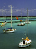 Sailboats in the Tropical Waters of Christiansted Harbor
