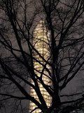 Washington Monument Sheathed in Scaffolding