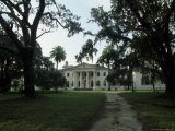 Old Antebellum Style Mansion Amid Palm Trees and Live Oaks