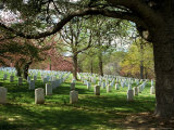 Rows of Tombstones Mark the Graves of Veterans Who Served During War