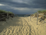Fence-Lined Path To the Beach at Cape Cod National Seashore