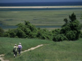 Couple Walking a Nature Trail Towards Marshes on Great Island