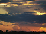 Dramatic Sky at Twilight with Clouds and Flying Bird Silhouette