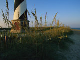 Sea Oats Bending in Wind Near the Cape Hatteras Lighthouse