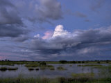 Rain Storm Clouds Brewing over a Swampy Wetland at Twilight