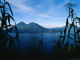 Corn Grows Around Lake Atitlan
