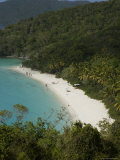Overhead of Trunk Bay