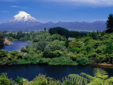 Mt Taranaki from Lake Mangamahoe  Near New Plymouth