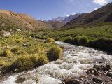 River in Rio Colorado Valley